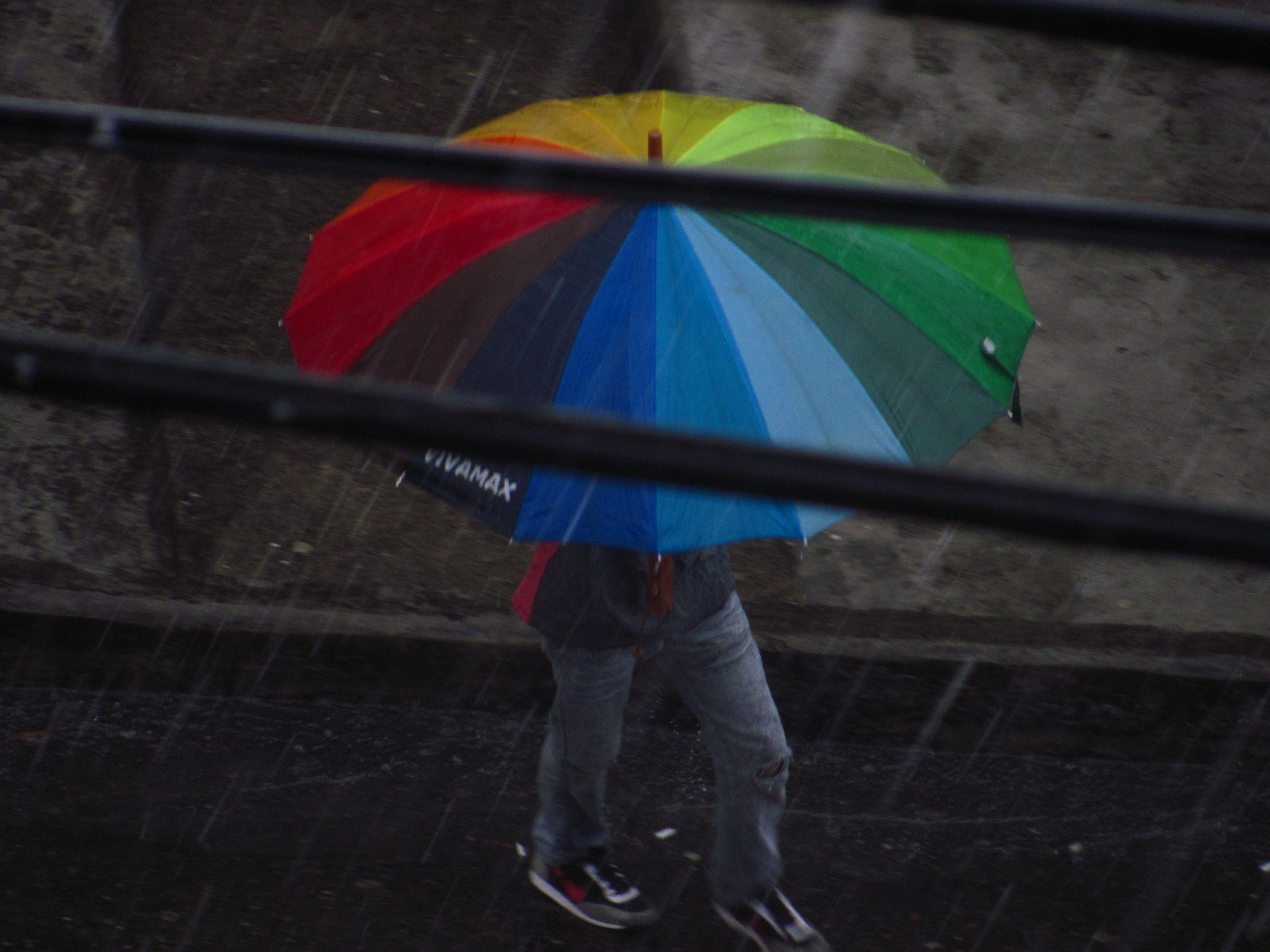 El señor de los paraguas - Literatura