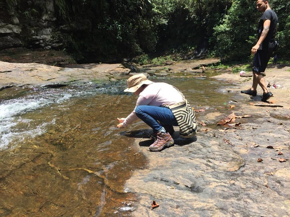 Tres viajes por Colombia y tres sensaciones - Fiesta del libro