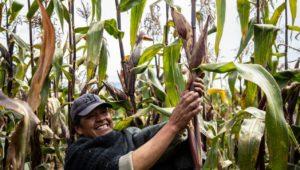 Mucho Colombia, una apuesta por el consumo local y sostenible -